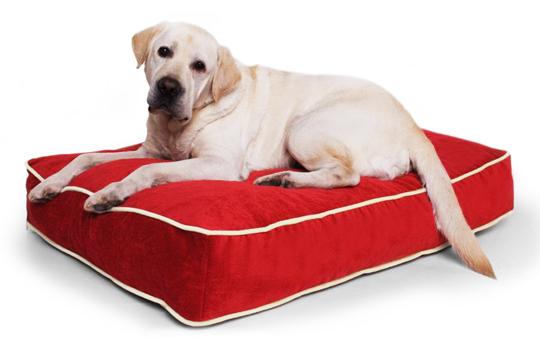 Лежанка для больших собак